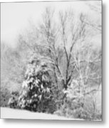 Country Winter Metal Print