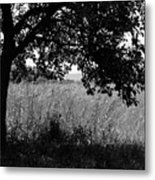 Countryside Of Italy Bnw Metal Print