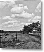 Countryside Views 3 Metal Print