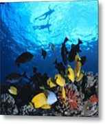 Couple Snorkels At Surfac Metal Print