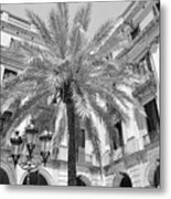 Courtyard Palm Metal Print
