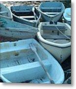 Cove Skiffs Metal Print