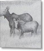Cow And Calf Moose  Metal Print