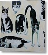 Cow Cats Metal Print
