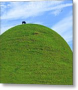 Cow Eating On Round Top Hill Metal Print