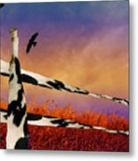 Cow Fence Metal Print