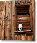 Cow Skull In Wooden Window Metal Print by Garry Gay