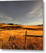 Cowboy Trail Metal Print