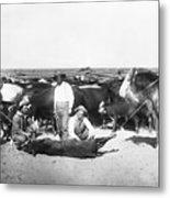 Cowboys Branding Cattle C. 1900 Metal Print