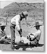 Cowboys: Branding Cattle Metal Print