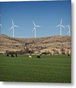 Cows And Windmills Metal Print