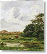 Cows In A Meadow Metal Print