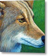 Coyote Logic Metal Print