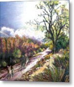Coyotes In Placerita Canyon Metal Print