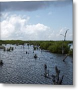 Ominous Clouds Over A Cozumel Mexico Swamp  Metal Print