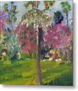 Crab Apple Blossom Time Metal Print