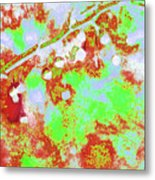 Crabapples Series #4 23 Metal Print