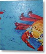Crabs Metal Print