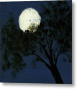 Cradling The Moon Metal Print