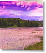 Cranberry Glade Lake Metal Print