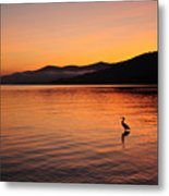 Crane At Sunrise Metal Print