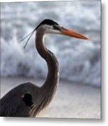 Crane By The Sea Metal Print