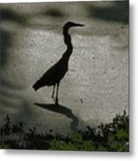 Crane Reflections Metal Print