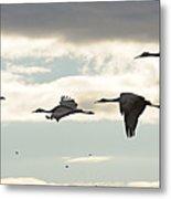 Cranes At Dawn 2 Metal Print