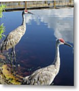 Cranes At The Lake Metal Print