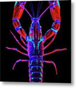 Crawfish In The Dark-  Redblue Metal Print