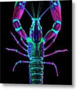 Crawfish In The Dark - Rosegreen Metal Print