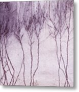 Crawling Roots Metal Print