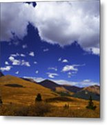 Crazy Blue Sky Metal Print by Barbara Schultheis