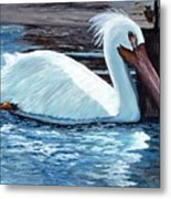 Crazy Feathers Metal Print