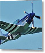 Crazy Horse From Air Show Metal Print