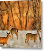 Creatures Of A Winter Sunset Metal Print