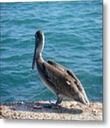 Creatures Of The Gulf - Lulled By The Waves Metal Print