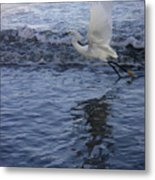 Creatures Of The Gulf - Take Off At Dusk Metal Print