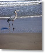 Creatures Of The Gulf - Walk This Way Metal Print