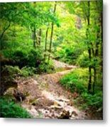 Creek Bend Metal Print