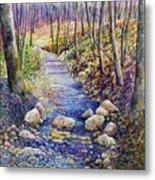 Creek Crossing Metal Print