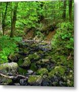 Creek Crossing In Ma Metal Print