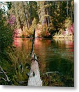 Creek Fall Metal Print