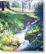 Creek Flow Metal Print