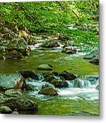 Creek In Great Smoky Mountains National Metal Print