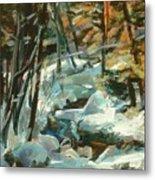 Creek In The Cold Metal Print