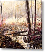 Creek In The Woods Metal Print