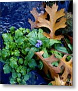 Creek Life Metal Print