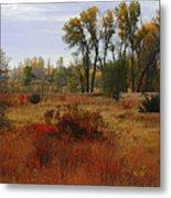 Creek Valley Beauty Metal Print