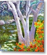 Creekside Metal Print